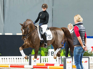Stockholm International Horse Show 2014, © Anna-Lena Bergqvist